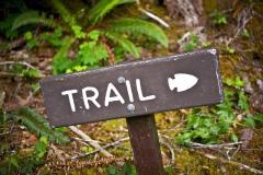 VSG_actu_trails_marensin